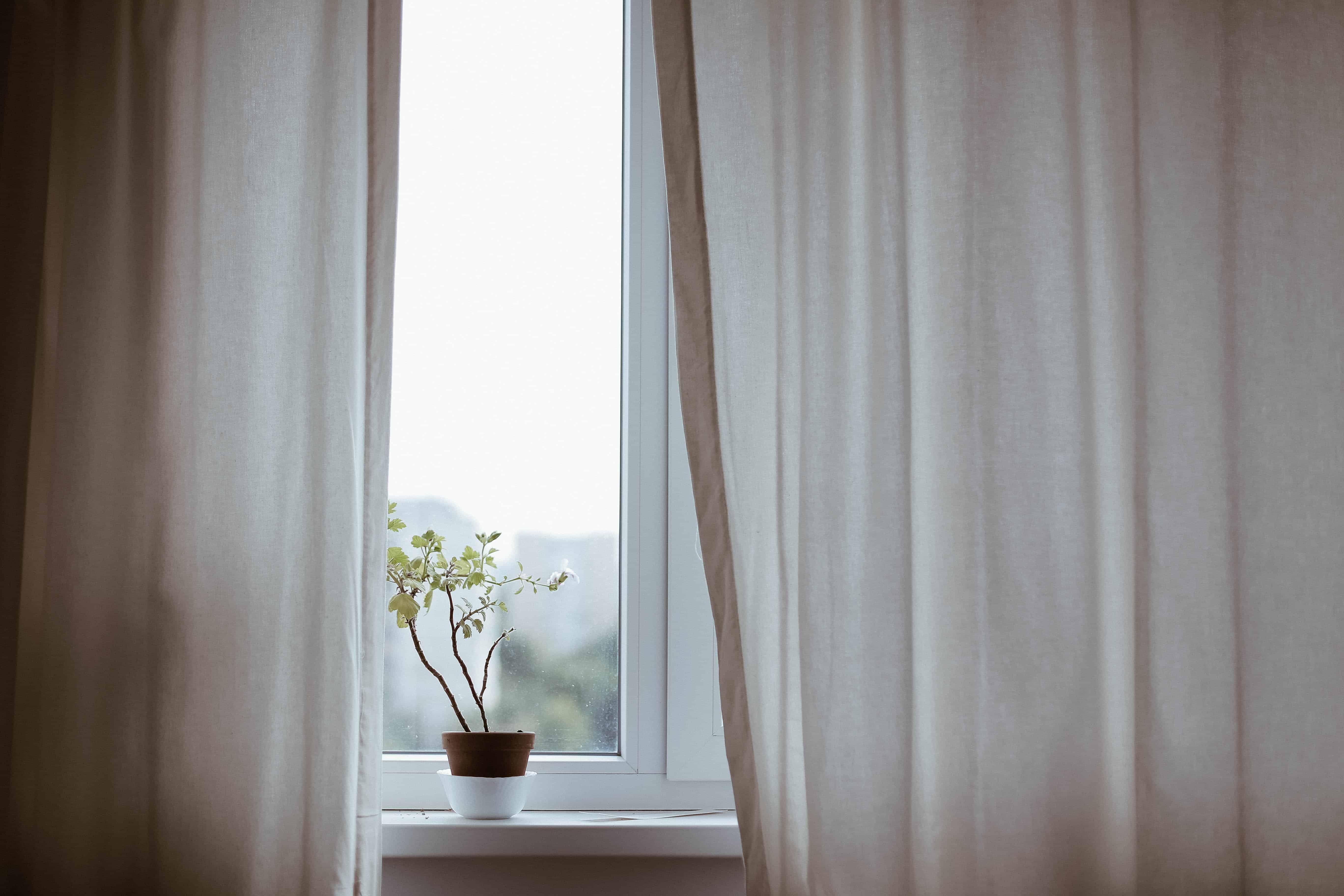 Sommer eller vinter - hvilken årstid giver din kælder problemer?
